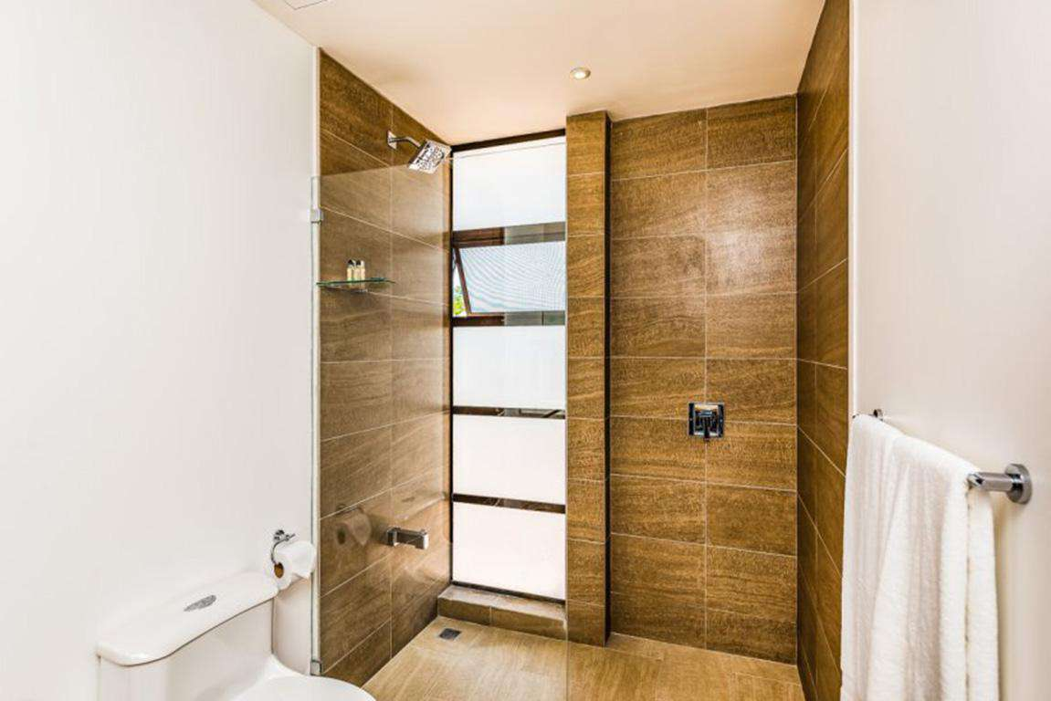 Guest bathroom , walk in shower