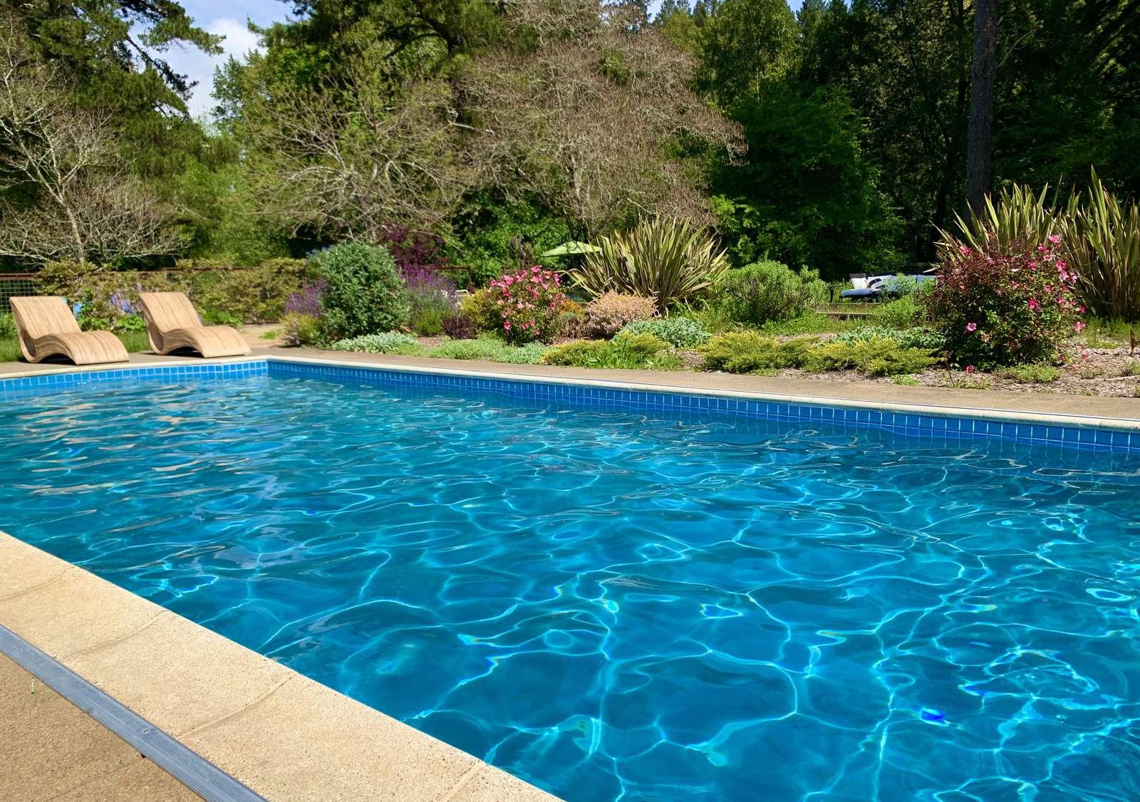 Refreshing pool the kids will love!