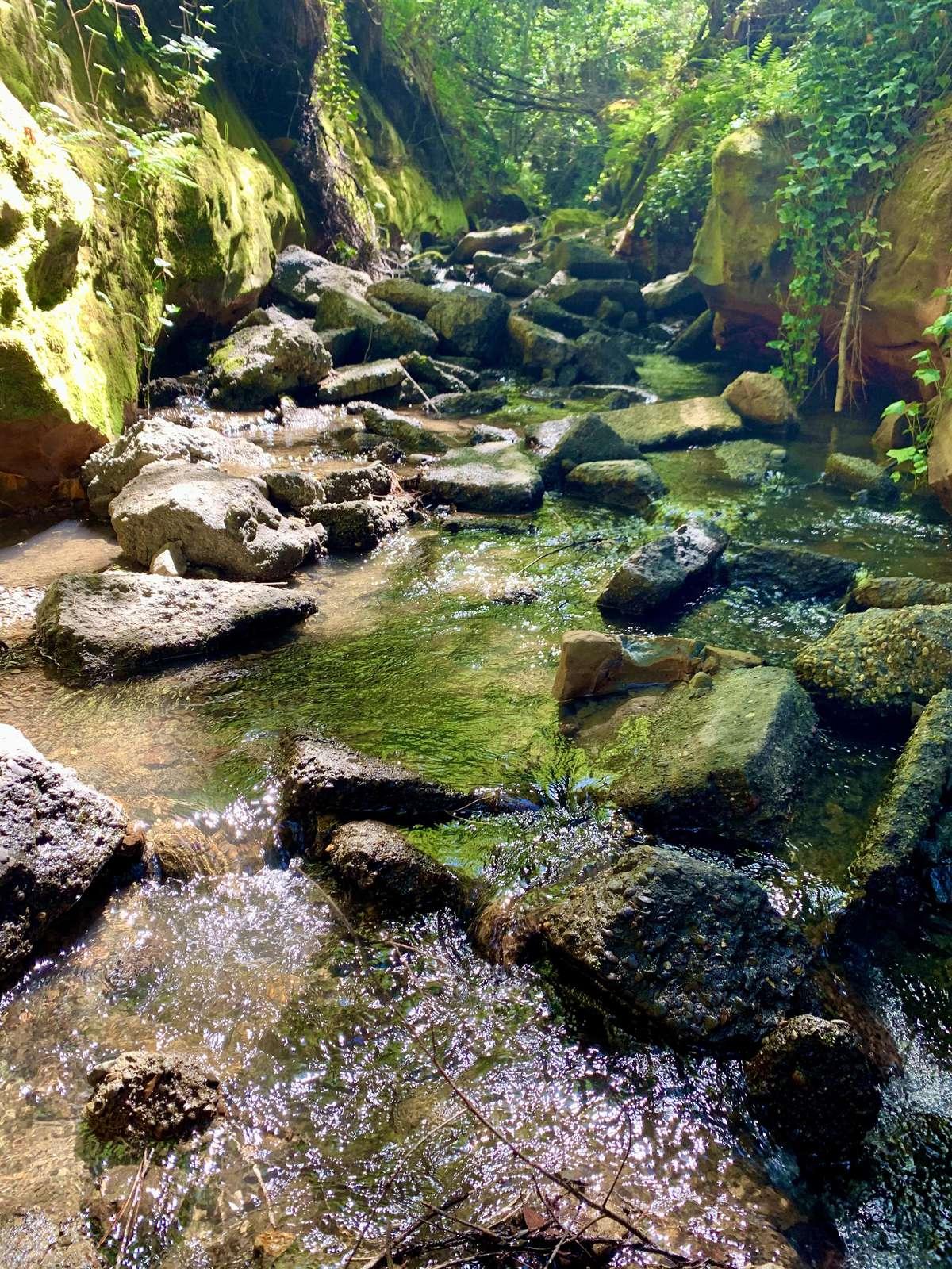 Purrington Creek swimming holes run through the property