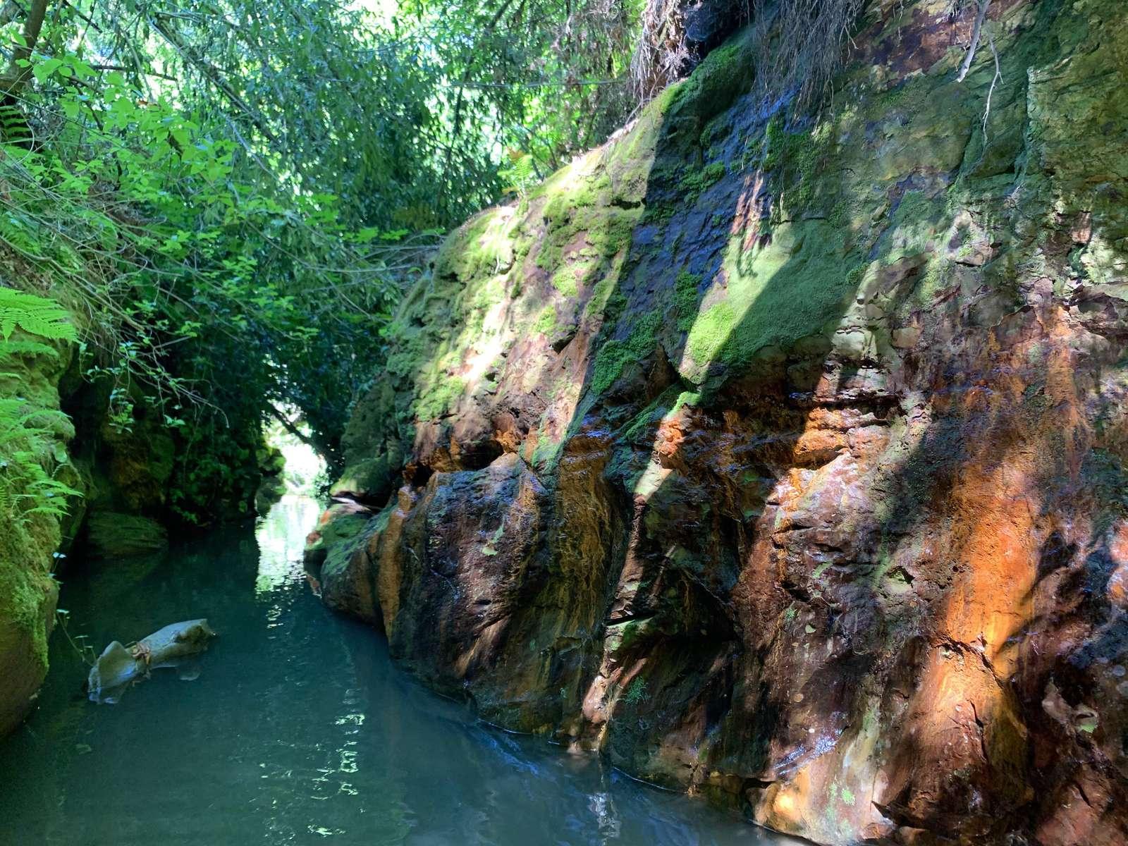 Purrington Creek swimming hole