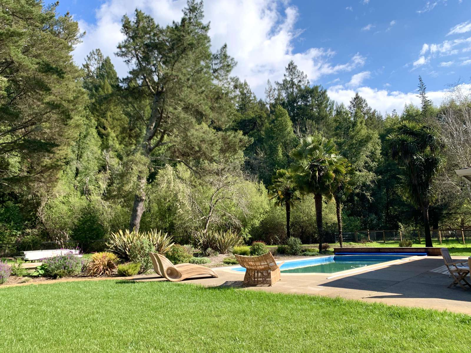 Rear fenced yard and pool area
