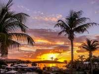 The Sunrises are Amazing! thumb
