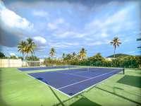 Tennis anyone? thumb