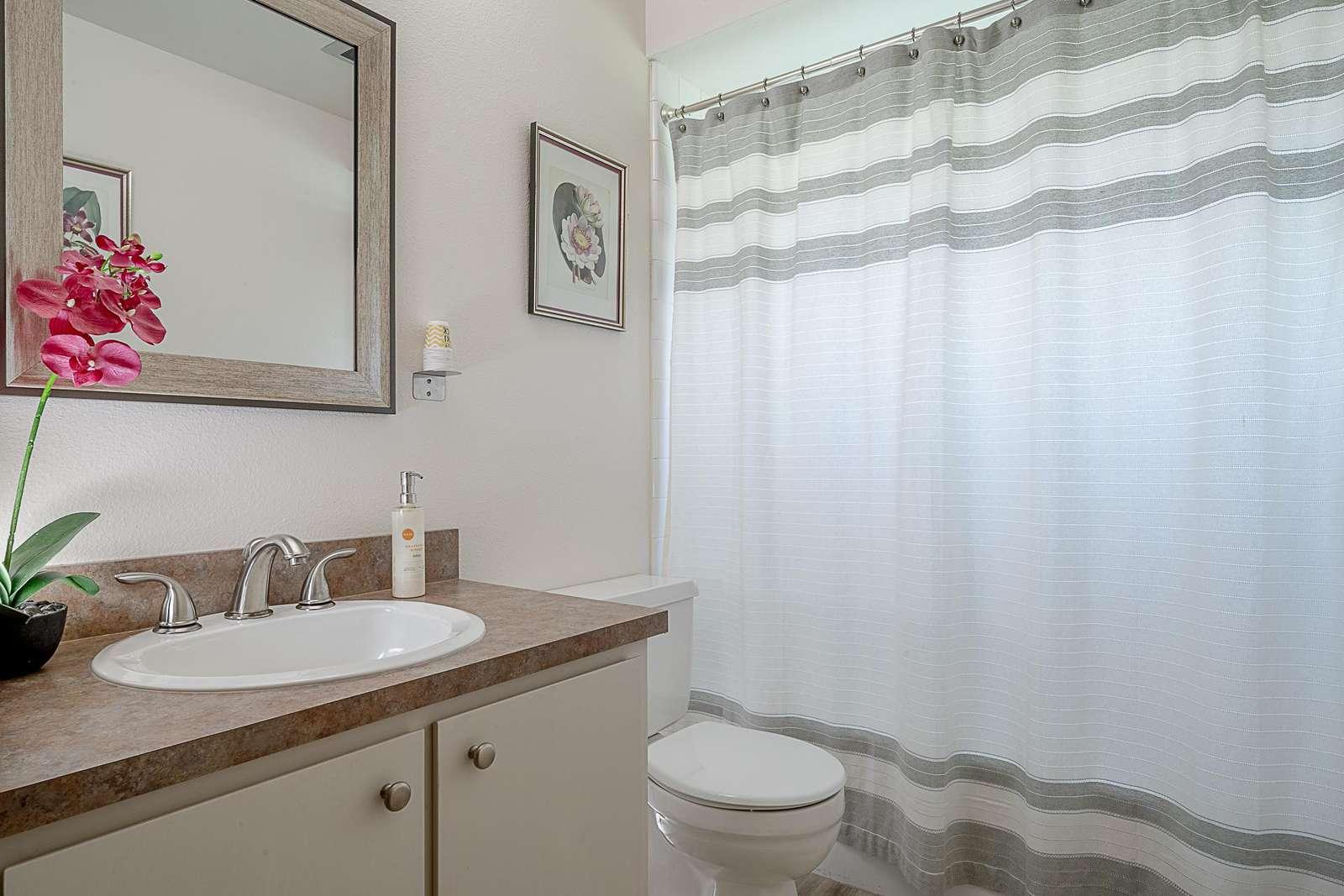 Hall Bathroom - Tub & Shower