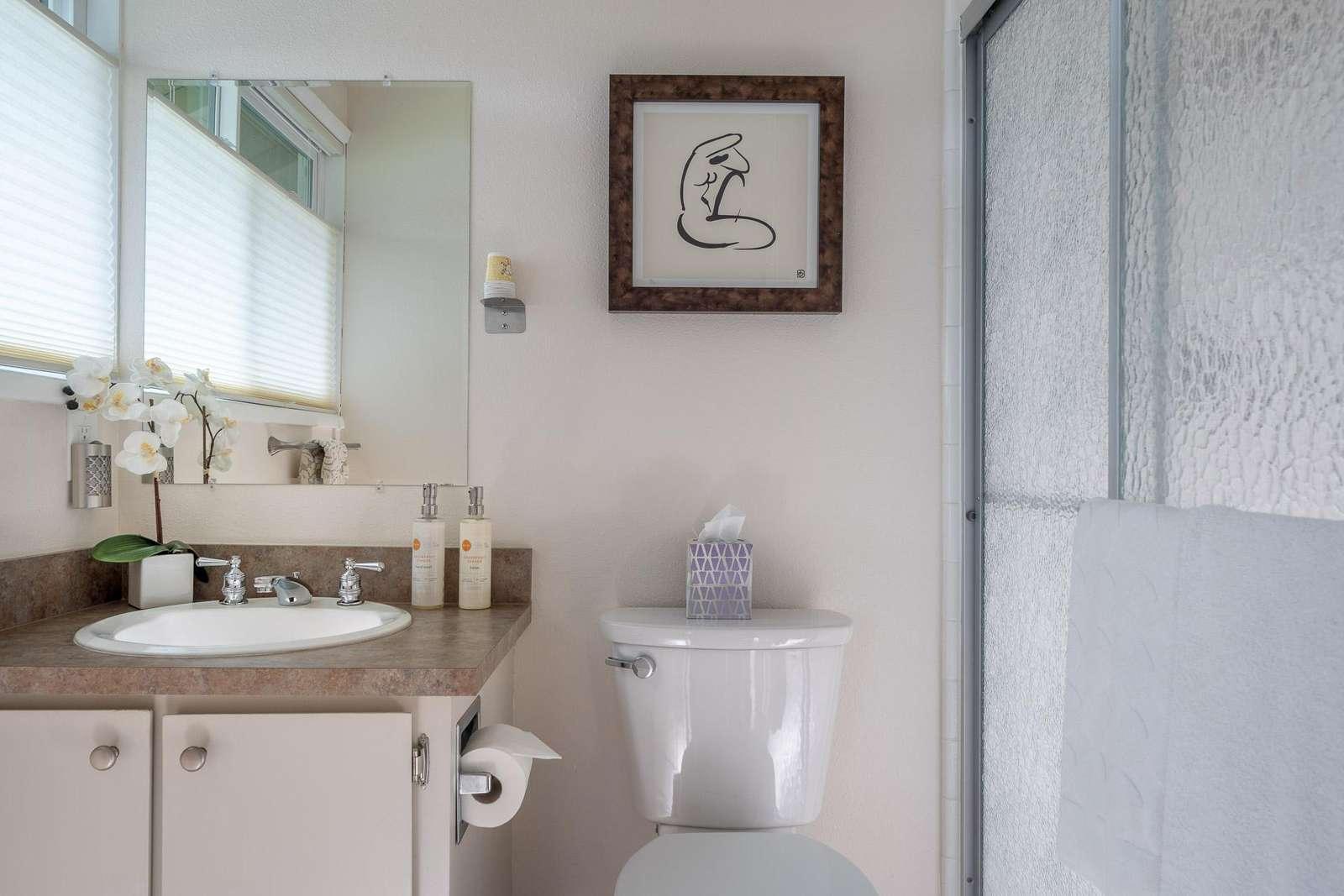 Master Bathroom Step-In Shower