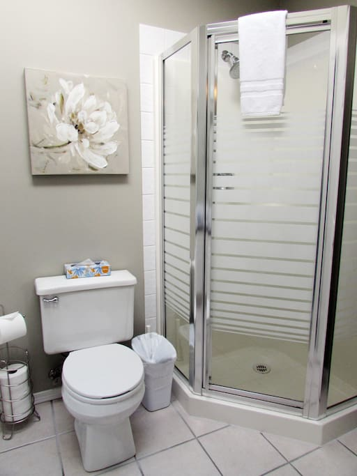 Upstairs Master Bath with Shower