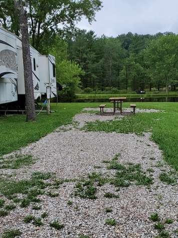 Site #41 (30 amp/Motorhome ONLY)