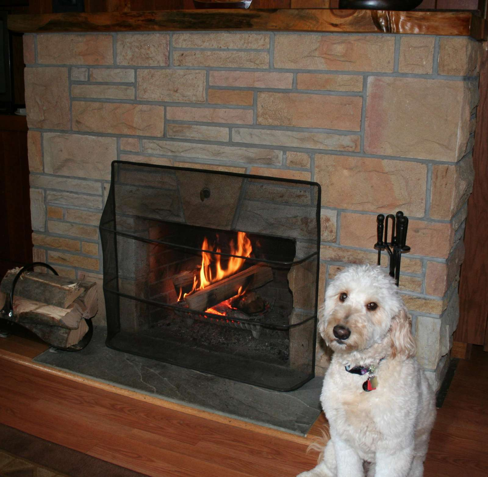"""Pearl"" in front of Buckeye's Fireplace"