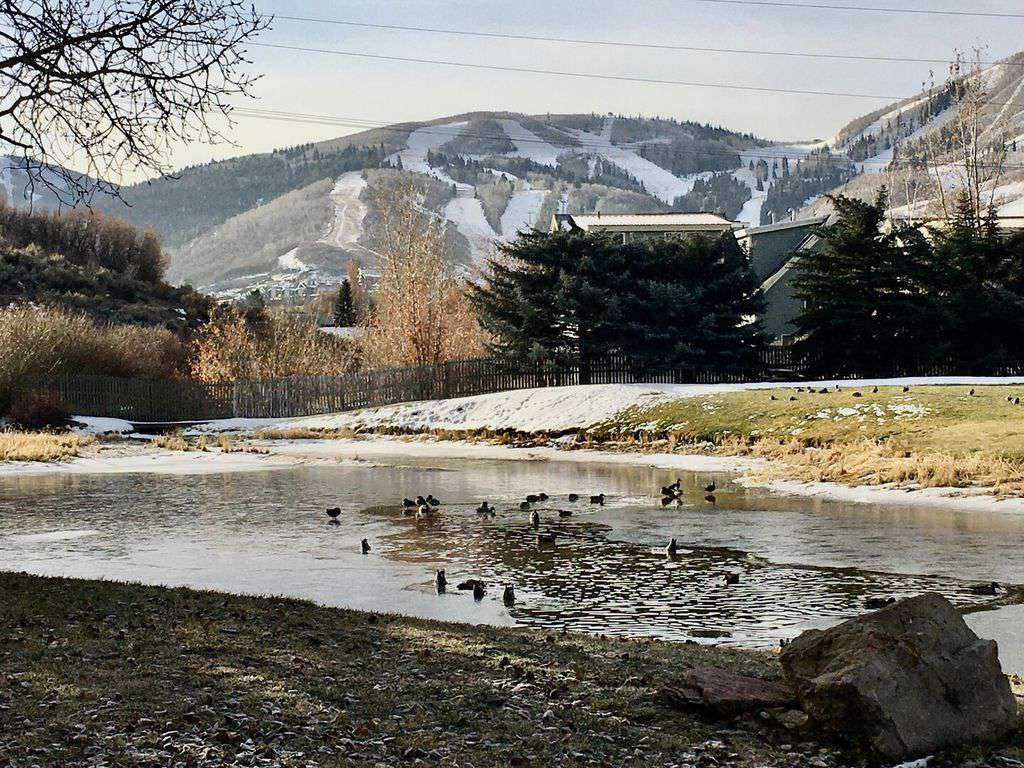 Pond and mountain views from the home are spectacular