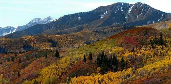 Fall colors on Utah mountains