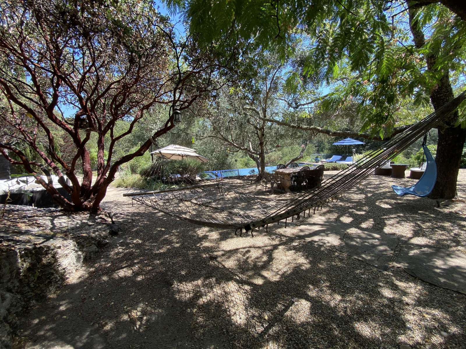 The hammock in the olive grove
