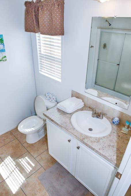 Master Bath with Bathroom Amenities