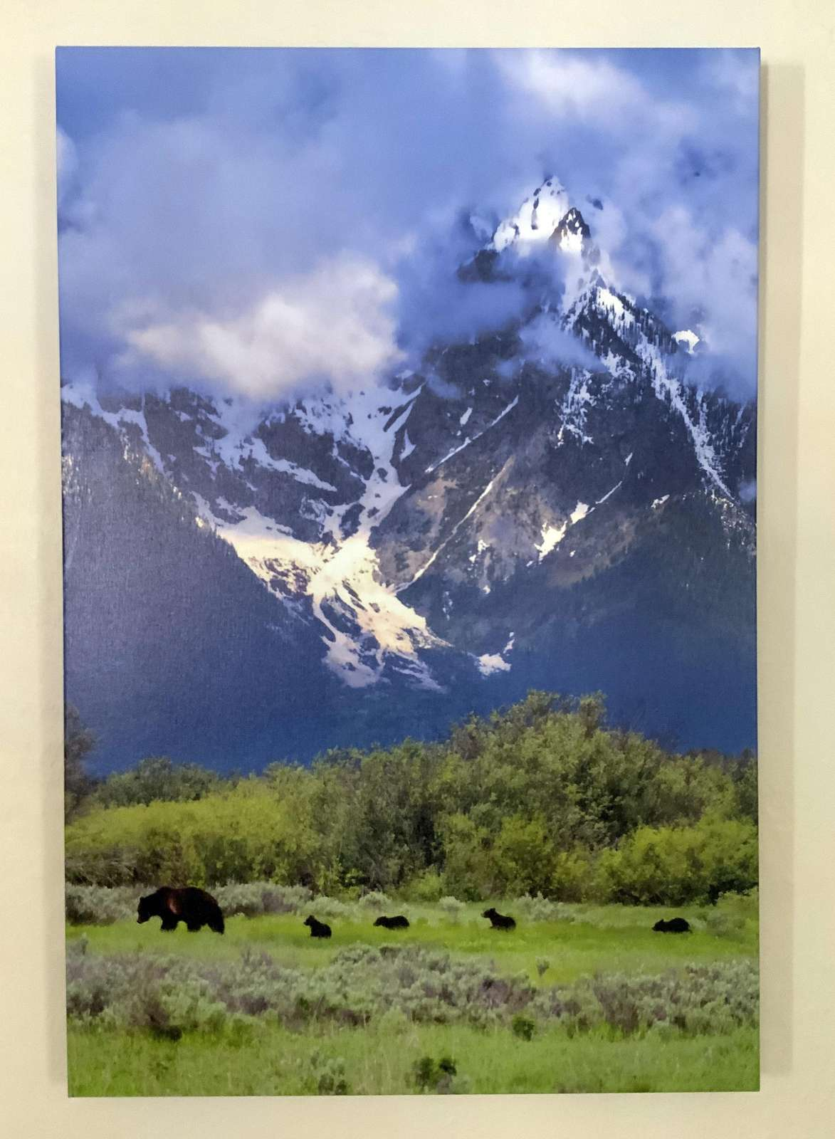 Large canvas of bear 399 and her 4 cubs of the year