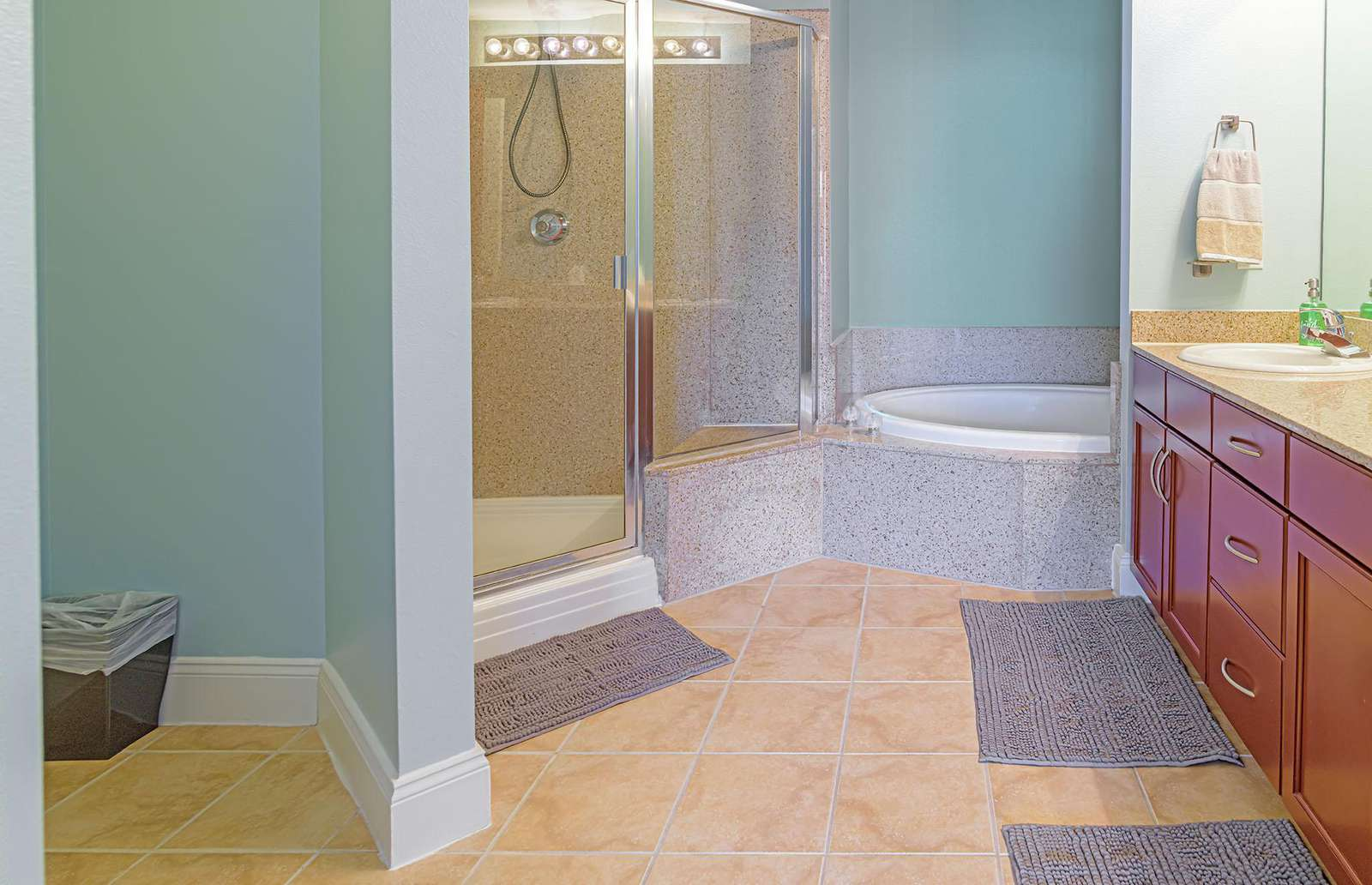 Master bath walk-in shower, soaker tub and double vanity!