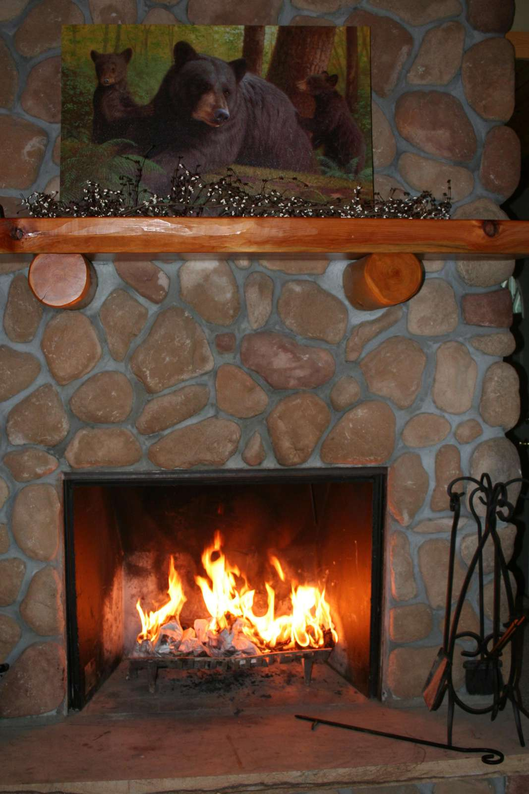 Fireplace with Fire!!!
