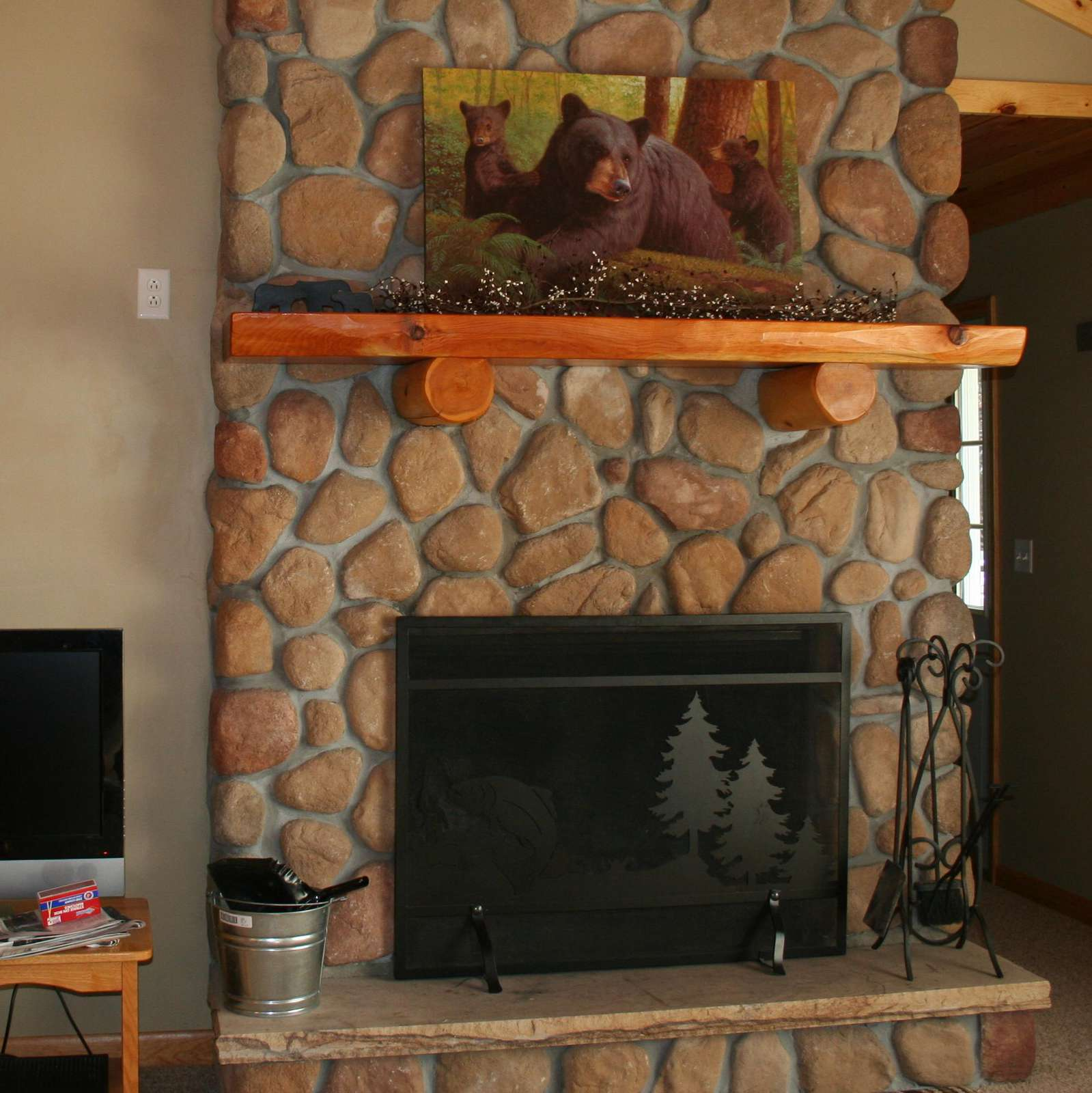 Fireplace with Screen