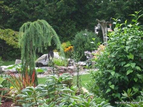 Gardens & Pond