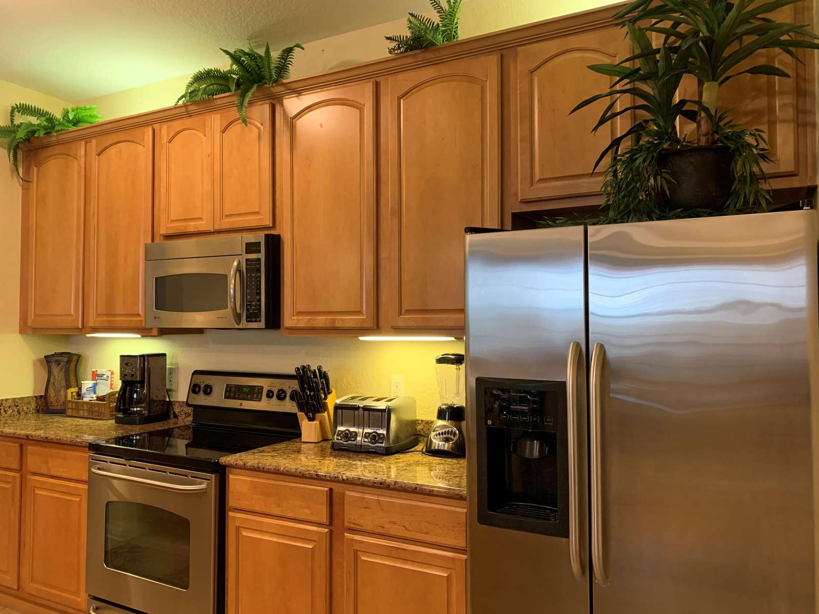 Gorgeous stainless steel appliances